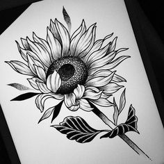 There is another craze is to draw patterns, flowers, mandala patterns in ink. Pencil Art Drawings, Drawing Sketches, Tattoo Drawings, I Tattoo, Cute Tattoos, Beautiful Tattoos, Sunflower Tattoos, Plant Drawing, Pen Art