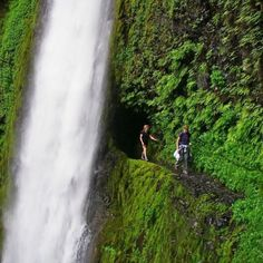 Tunnel falls, OR ( you can hike behind the fall!)
