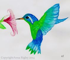 Anna Rigley - Home Art Projects, Projects To Try, Anna, My Arts, Hummingbirds, Artist, Animals, Animales, Animaux