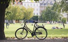 El viajero (El Pais) Copenhague.