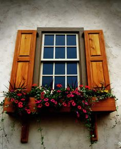 love the shutters too
