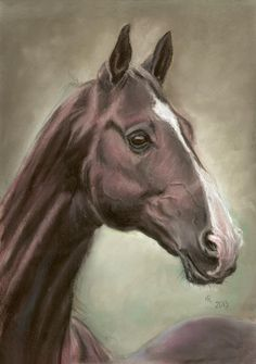 Achal-tekin stallion Dartgyn Geli in soft pastel 30x40 cm, Based on the photo made by Karolina Wengerek