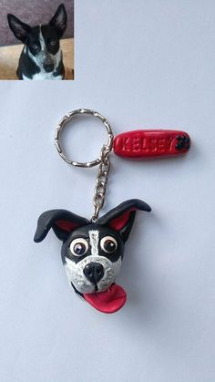 All you need to know about dry, damaged hair. Collie Mix, Polymer Clay Crafts, Border Collie, Short Hair Styles, Personalized Items, Dogs, Smile, Fimo, Bob Styles