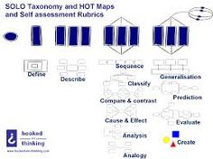 Image result for solo taxonomy in english