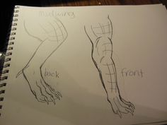 Wings of fire leg and feet design made and drawn by me Novaeclipse
