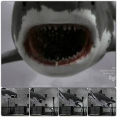 Sharknado, best scene in the movie.
