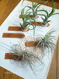 use this idea for escort cards.