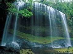 Worship song:I got a river of Life The Piano, Nature Images, Nature Pictures, Mozart Effect, Smoky Mountain Waterfalls, Most Beautiful Images, Baby Music, Worship Songs, Travel Maps