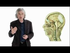 Steven Pinker - Psychologist, Cognitive Scientist, and Linguist at Harvard University  How did humans acquire language? In this lecture, best-selling author Steven Pinker introduces you to linguistics, the evolution of spoken language, and the debate over the existence of an innate universal grammar. He also explores why language is such a funda...