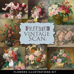 Flowers Illustrations Kit