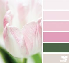 today's inspiration image for { color shore } is by . thank you, Nicolette, for another wonderful image share! Colour Pallete, Colour Schemes, Color Combos, Color Palettes, Spring Design, Beautiful Color Combinations, Design Seeds, Cool Tones, Colour Board