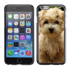 Hard Phone Case Cover Skin For Apple iPhone Havanese silk dog puppy #Unbranded