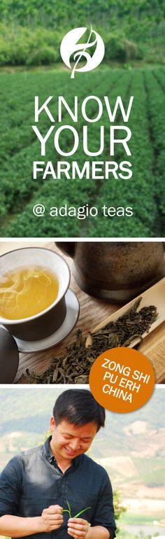 Shop online for loose-leaf Pu-erh teas sourced directly from the artisan farmers who tender them. Pu-erh varieties include natural and flavored 'Shou' Pu-erhs. Power Smoothie, Pu Erh Tea, Teas, Natural Skin, Farmer, Smoothies, Herbalism, Spirit, Health