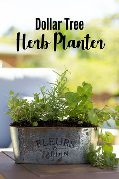 This simple but lovely Herb Garden Planter is super affordable to make! This simple but lovely Herb Garden Planter is super affordable to make with help from Dollar Tree. Herb Garden Planter, Herb Garden Design, Diy Herb Garden, Herb Planters, Herb Pots, Herbs Garden, Gardening For Beginners, Gardening Tips, Kansas City