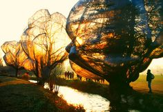Christo and Jeanne-Claude  Wrapped Trees, Fondation Beyeler and Berower Park,  Riehen, Switzerland