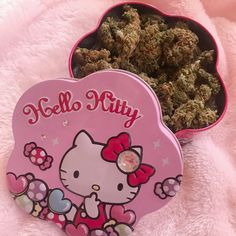 Bad Girl Aesthetic, Pink Aesthetic, Princess Aesthetic, Pipes And Bongs, Puff And Pass, Stoner Girl, Oui Oui, Teenage Dream, T Rex
