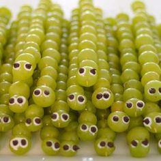Grape caterpillar grapes
