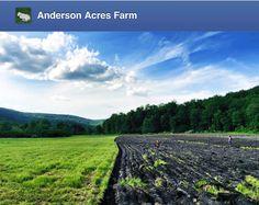 #CSA Note June 16, 2014 #Food #Ag #OrganicFarm #Connecticut #Kent #Organics #FarmFresh #FarmToPlate #Animals #Goats #YearRoundFarms #AgBlog #Recipes #FarmLife #KnowFarmsKnowFoods #Farmers #CTFarms