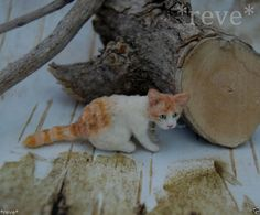 OOAK Realistic Handmade Ginger White Cat Dollhouse Miniature 1:12 Sculpt
