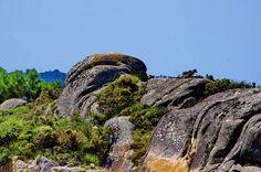 Cambados Galice Espagne 205 - Illa de Arousa