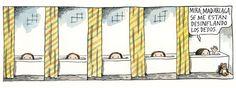 Por Liniers