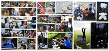 Top Art Exhibition - Photography » NZQA High School, Photo Wall, Boards, Digital, Top, Photography, Design, Planks, Photograph