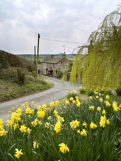 Chapel Hill village, Wharfedale, Yorkshire
