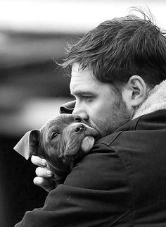 Tom Hardy ... Snooching a baby puppy // In need of a detox? 10% off using our discount code 'Pinterest10' at www.ThinTea.com.au
