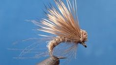 Hammer Creek Fly Fishing - YouTube