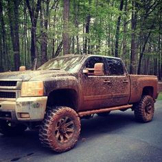 looks like my truck after a good rain because i live on a muddy red clay road :)