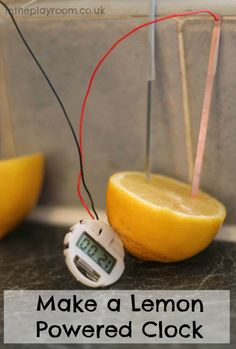 Lemon clock science experiment for kids, a fun way to learn about electricity.