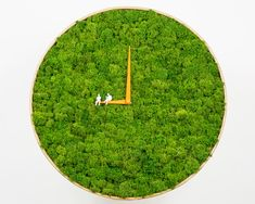 clock by noktuku brings nature home with real reindeer moss from norway