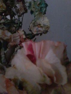 + paper flowers