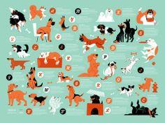 Dogs Alphabet – 55 Hi's