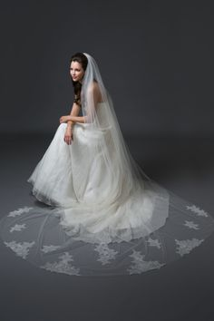 "Cathedral veil with Chantilly lace applique and Swarovski crystal beading.  ""NORA"""