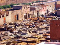 5 Tips to Visiting the Tanneries in Marrakech