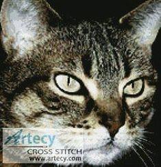 Tabby Cat - cross stitch pattern designed by Tereena Clarke. Category: Cats.
