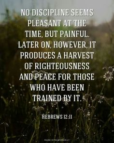 No discipline seems pleasant at the time, but painful. Later on, however, it produces a harvest of righteousness and peace for those who have been trained by it. Self Quotes, Bible Quotes, Motivational Quotes, Inspirational Quotes, Self Righteous Quotes, Self Control Quotes, Daily Quotes, Discipline Quotes, Self Discipline