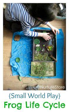 Wonderful nature small world play :: frog life cycle. Great loose parts play for science and nature study and sensory play. Wonderful nature small world play :: frog life cycle. Great loose parts play for science and nature study and sensory play. Preschool Science, Science Classroom, Science For Kids, Science And Nature, Waldorf Preschool, Preschool Learning, Nature Activities, Science Activities, Science Projects