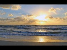 Anna Maria Island, Anna Marias, Beach Vacation Rentals, Turquoise Water, Gulf Of Mexico, Baths, Mango, Bedrooms, Cottage