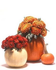 pumpkins as flower pots