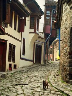 Plovdiv, Bulgaria - going here TOMORROW!!