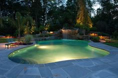 Freeform pool design idea, wish this was in your back yard?