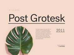 I have gathered a collection of 6 grotesque fonts that are widely used on minimal designed websites lately.