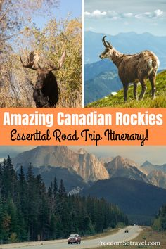 The spectacular Vancouver to Banff drive is a traveler's dream come true! Use this easy step-by-step guide to choose your best Canadian Rockies itinerary! Canada Vancouver, Vancouver Travel, Canadian Travel, Canadian Rockies, Canadian Food, Quebec, Banff National Park, National Parks, Montreal