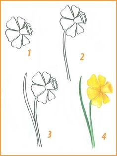 Step by step drawing of flowers Поэтапное рисование цветов 7 Step by step drawing of flowers 7 - Easy Flower Drawings, Flower Art Drawing, Flower Drawing Tutorials, Flower Sketches, Plant Drawing, Love Drawings, Easy Drawings, Art Tutorials, Painting & Drawing