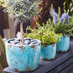 Turquoise Plant Pots - View All Home Accessories - Treat Your Home - Home Accessories