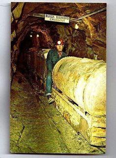 CRIPPLE CREEK CO COLORADO Mollie Kathleen Gold Mine Railway POST CARD POSTCARD