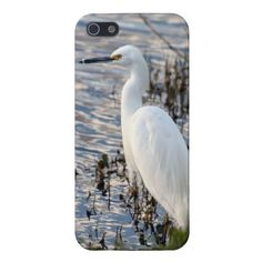 Great White Heron iPhone 5 Case