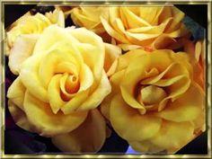 Kezdőlap - marikappsoldala.lapunk.hu Happy Birthday, Flowers, Plants, Spanish Inspirational Quotes, Caramel, Happy Brithday, Urari La Multi Ani, Happy Birthday Funny, Plant